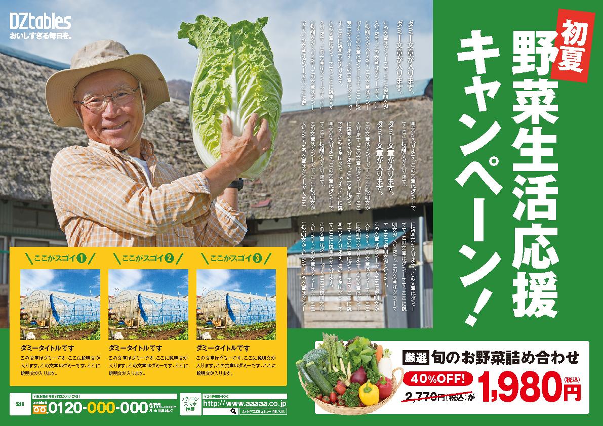 農林/野菜販売 チラシ広告A3