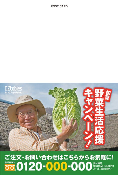 農林/野菜販売 DMハガキ