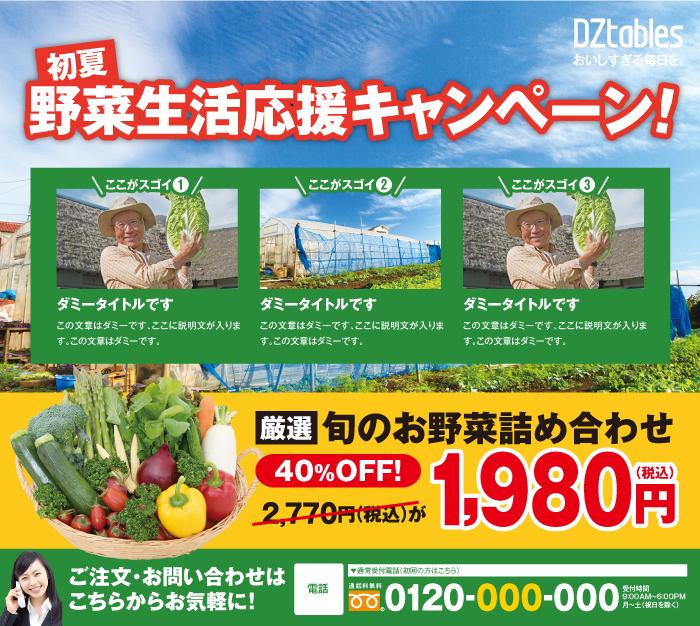 農林/野菜販売 新聞広告半5段
