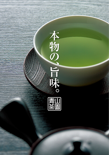 日本茶 チラシ広告B4