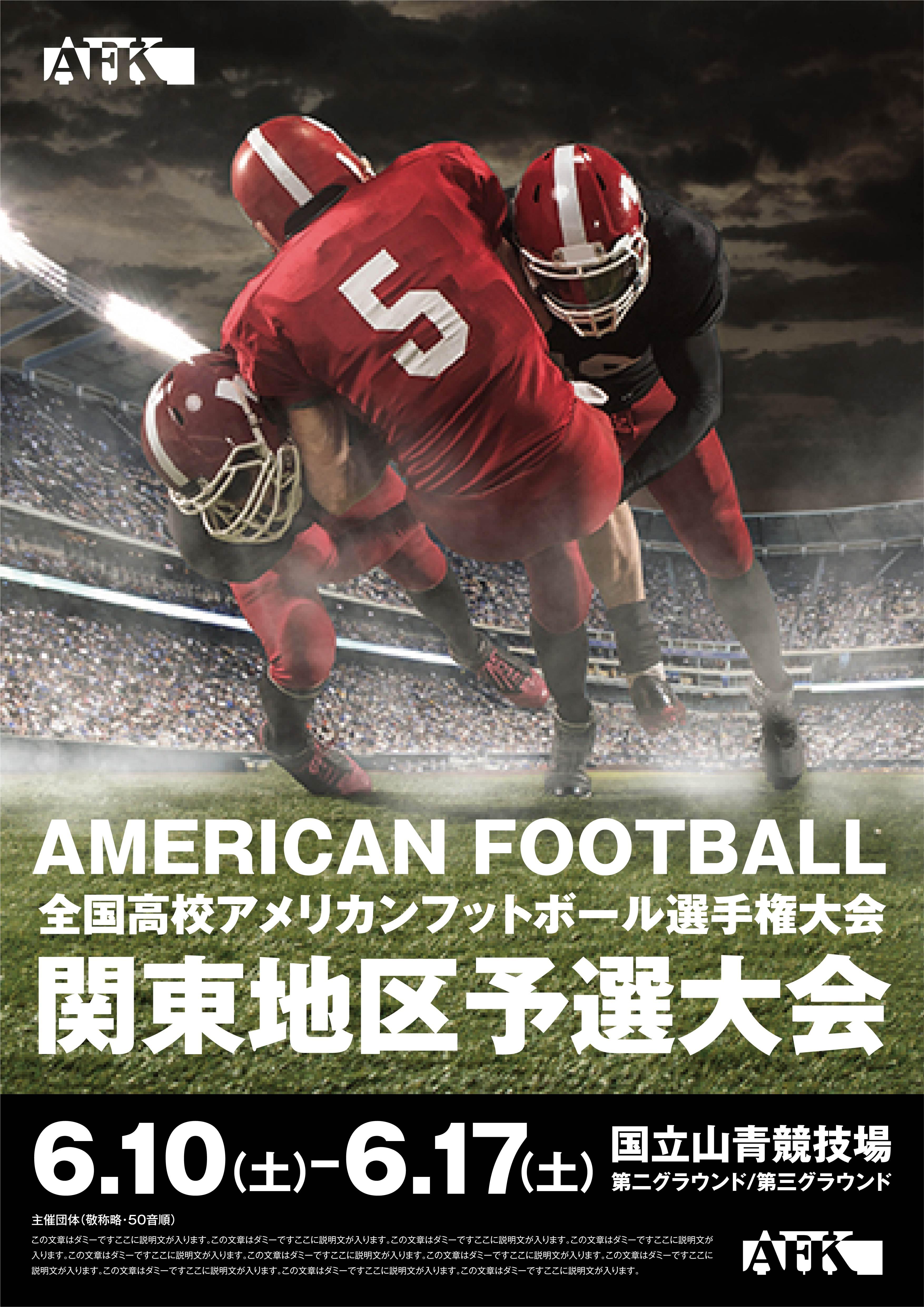 スポーツ観戦 チラシ広告A3