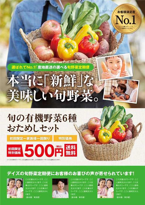 野菜定期便 チラシ広告A4