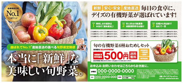 野菜定期便 新聞広告全5段